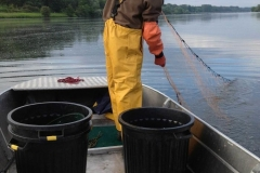 Fishing dinghies_103