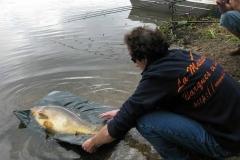 Fishing dinghies_105